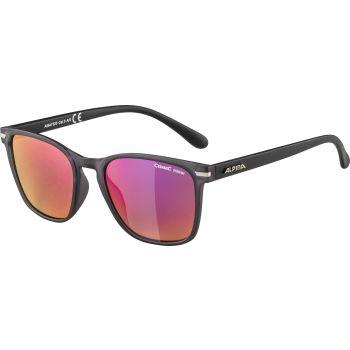 Alpina YEFE, sunčane naočare, siva