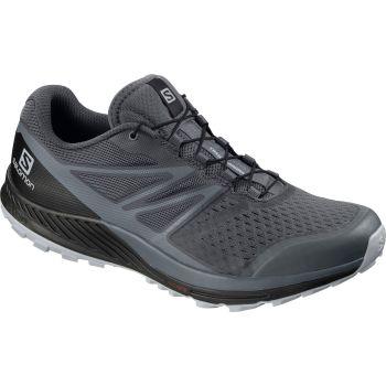 Salomon SENSE ESCAPE 2, muške patike za trail trčanje, siva