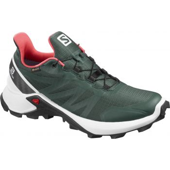Salomon SUPERCROSS GTX W, ženske patike za trčanje, zelena